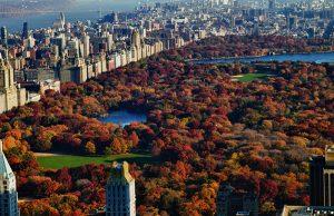 Vista aérea de Central Park en Otoño