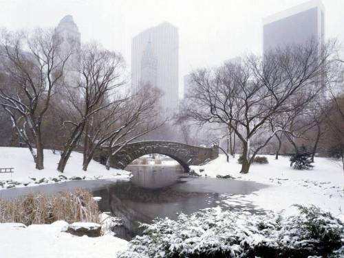Invierno en nueva york turismo nueva york for Imagenes de patios de invierno