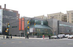 Museos en el Bronx