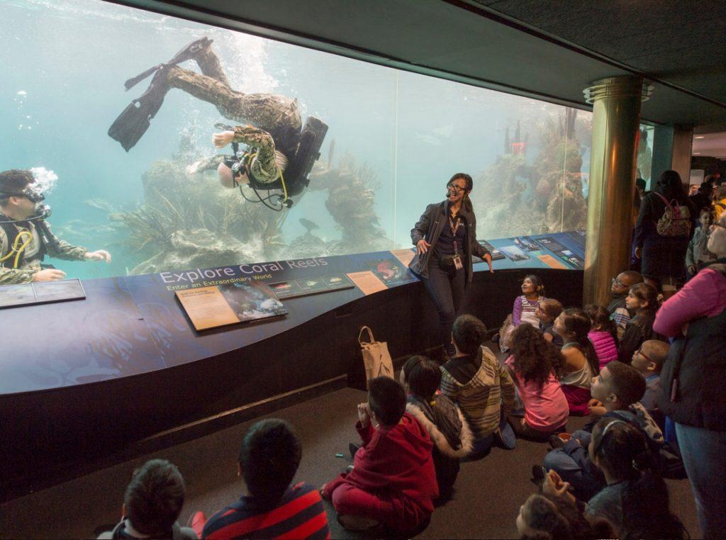 acuario de nueva york