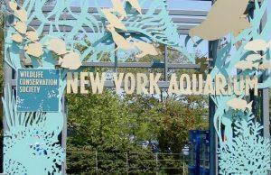 Acuario de Nueva York (New York Aquarium)