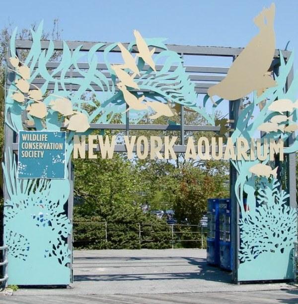 Acuario De Coney Island
