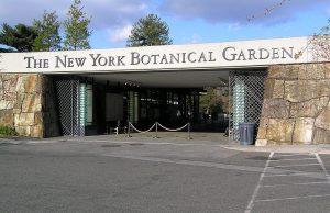 Jardín Botánico de Nueva York (New York Botanical Garden)