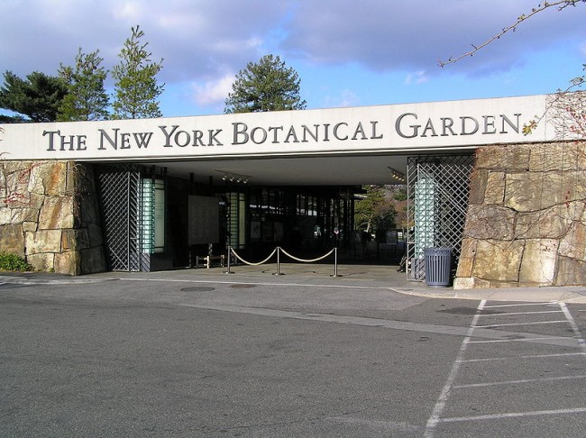Jardín Botánico de Nueva York