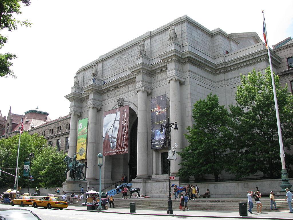 Met Museum Natural History