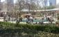 Zoológico de Central Park - autor
