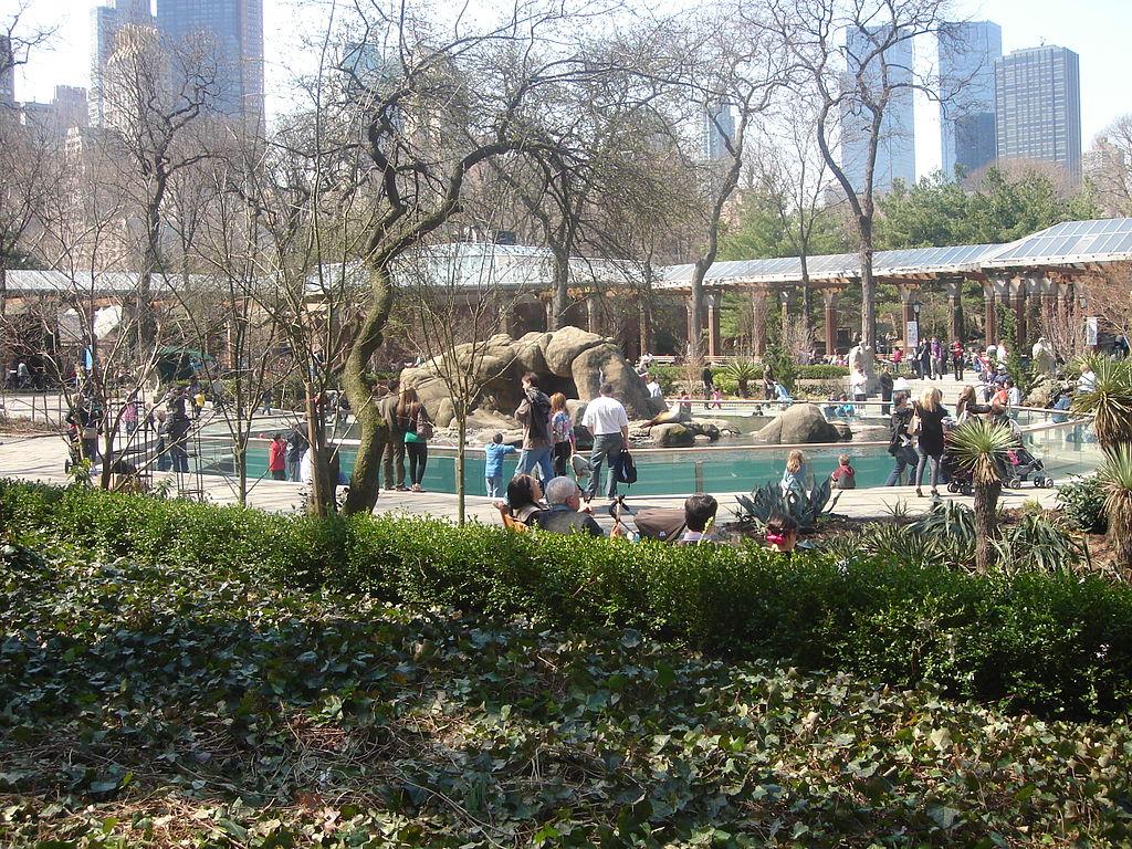 Zoológico de Central Park