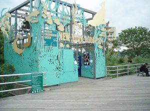 brooklyn turismo
